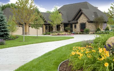 Yard Maintenance Tips For The Summer